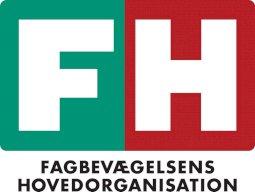 FH søger Alsidig Controller