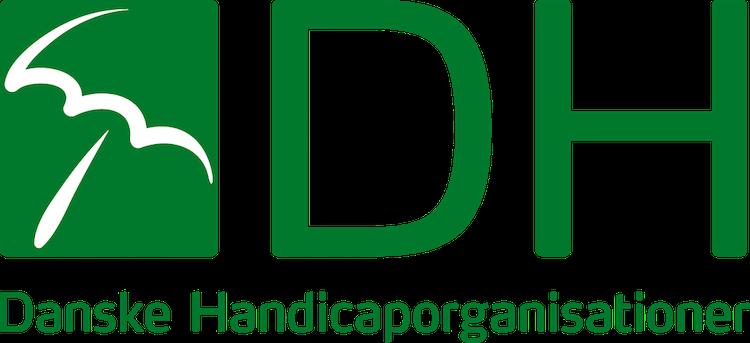 DIREKTØR TIL DANSKE HANDICAPORGANISATIONER